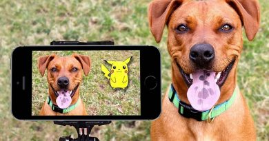 pokemon-dog-snapchat