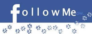 Facebook - Follow me