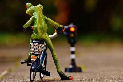 frog-bicycle-red-light